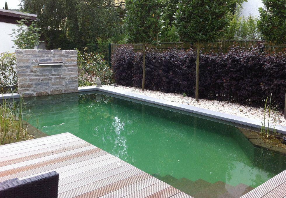 Naturpool Mit Einem Besonderen Brunnen Element Garten Von Gartner Natur Pool Schwimmteich Pool