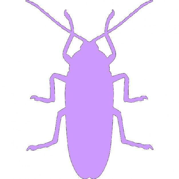 Fichier sst **  cafard insecte ** pour silhouette studio cameo