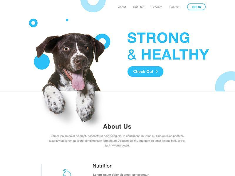 Animal Clinic Lander Pet Clinic Pet Branding Banner Design Layout
