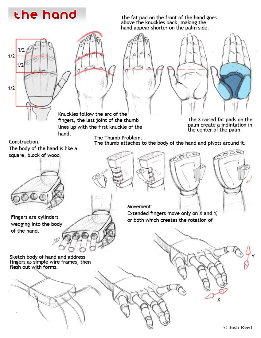 Drawsh is a free art tutorial site updated weekly, covering anatomy ...