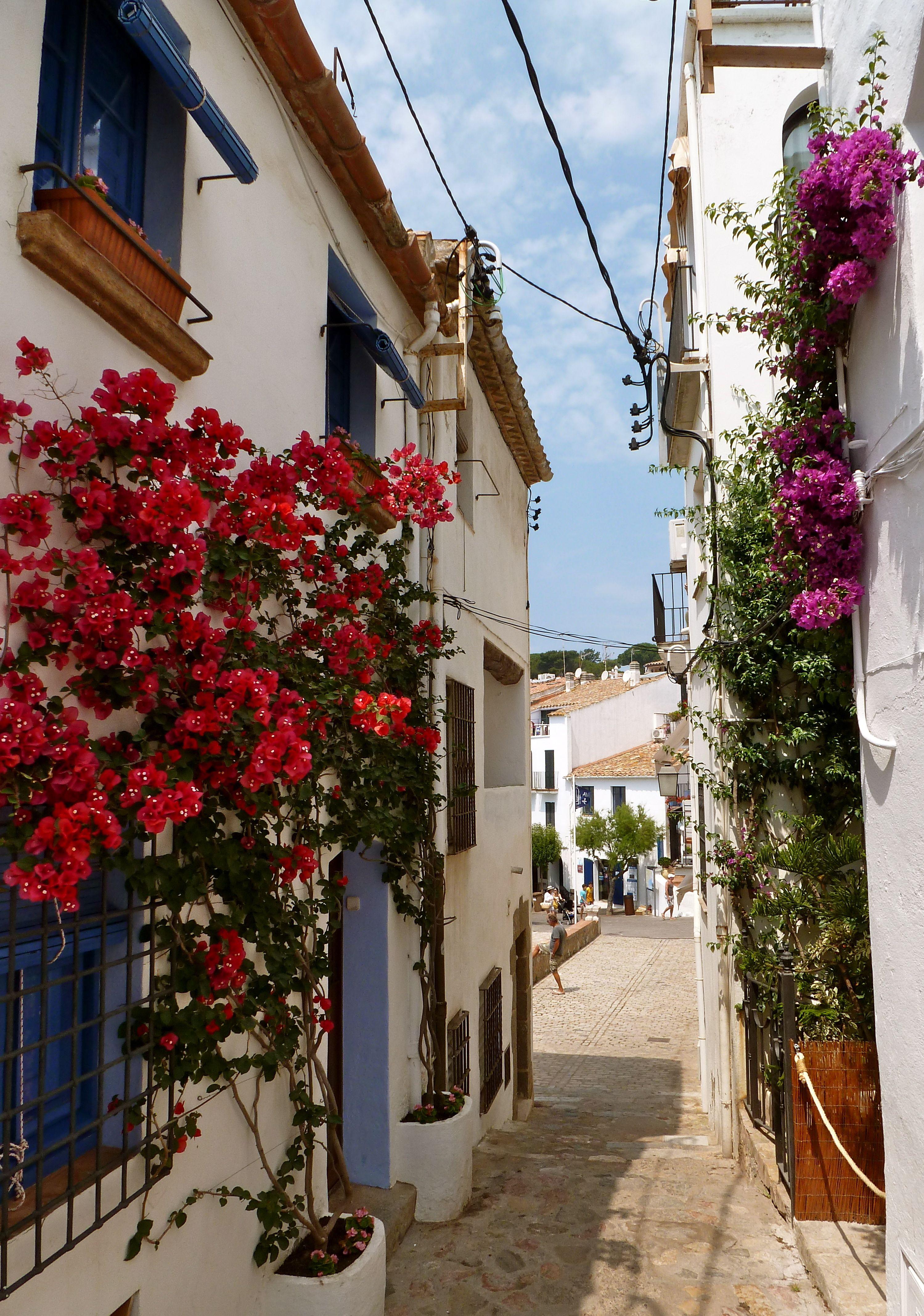 Calella De Palafrugell Costa Brava Viajes Grecia Costa