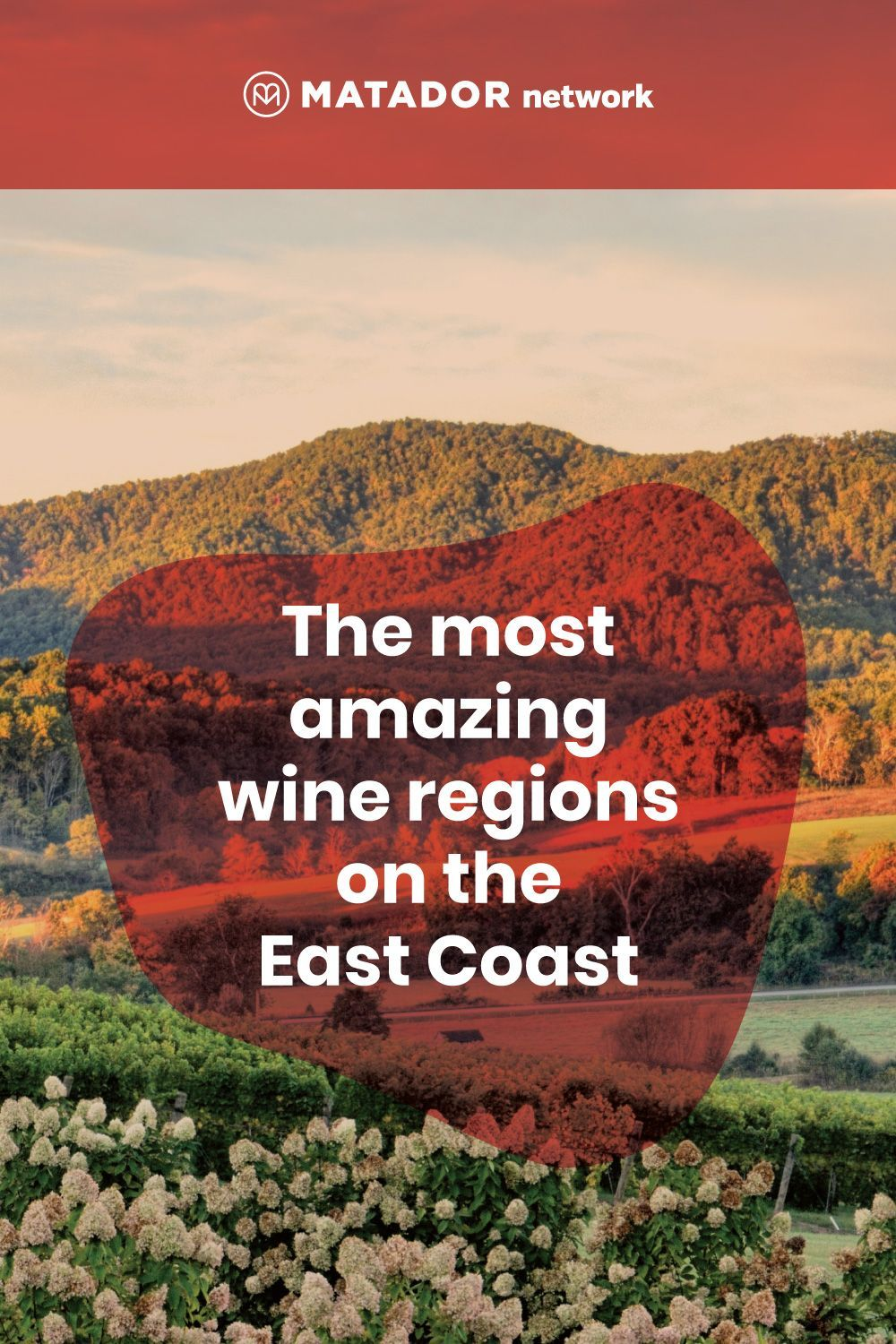 The Most Amazing Wine Regions On The East Coast In 2020 Wine Region East Coast Coast