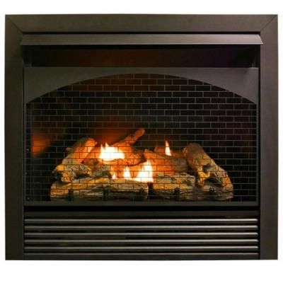 Procom Heating Procom 32 000 Btu Gas Fireplace Insert Dual Fuel