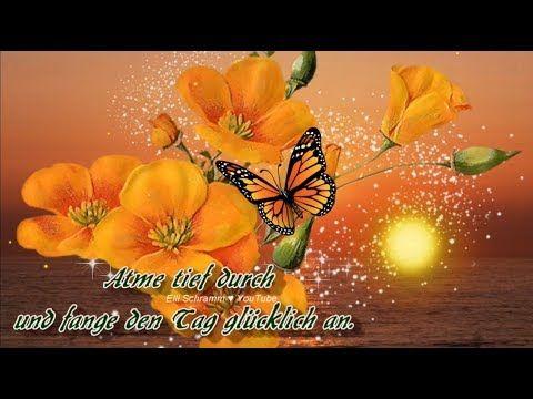 Guten Morgen Ich Wunsche Dir Einen Glucklichen Sonntag Mit Lieben Grussen Von Mir You Liebe Guten Morgen Grusse Liebe Gute Nacht Grusse Guten Abend Grusse