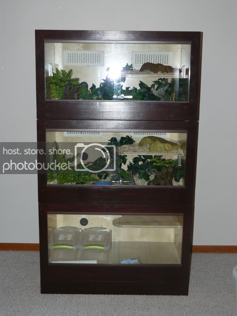 DIY Wooden Cage Construct Information sSNAKESs Reptile
