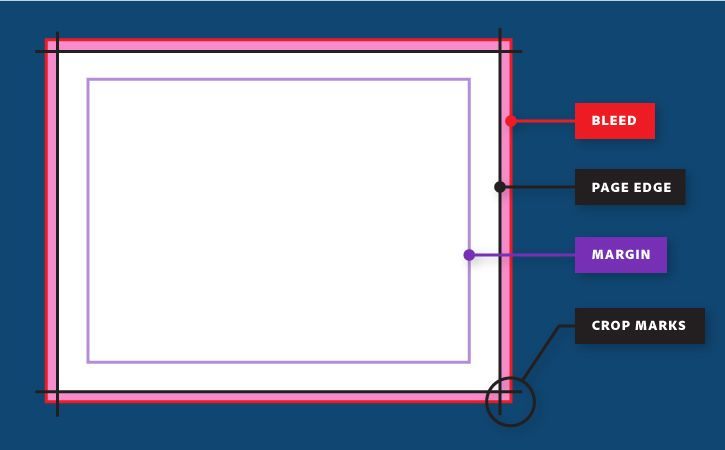 how to create bleed lines in publisher