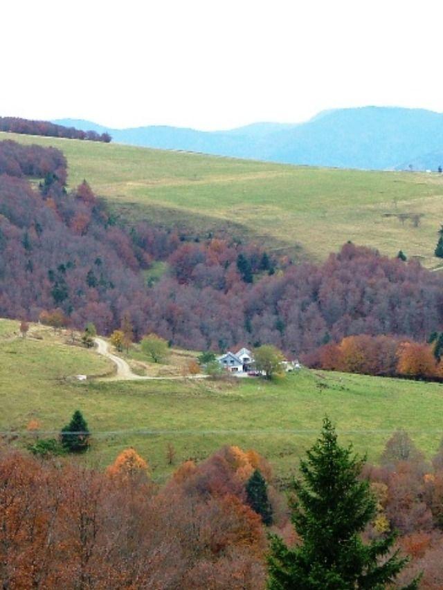 Ferme auberge Salzbach - Schnepfenried, Haut-Rhin en 2020   Ferme auberge, Ferme auberge alsace ...
