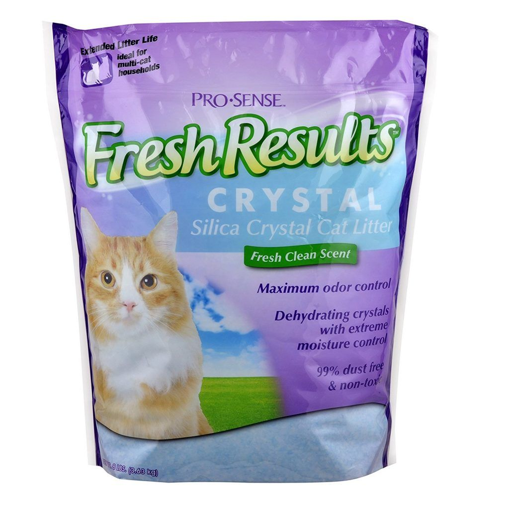 Top 10 Best Cat Litters Reviewed 2017 Cat Litter Best Cat Litter Litter