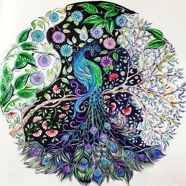 Johanna Basford Coloring Book Secret Garden Prismacolor Adult Books Peacocks Doodles Print