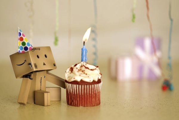 danbo birthday