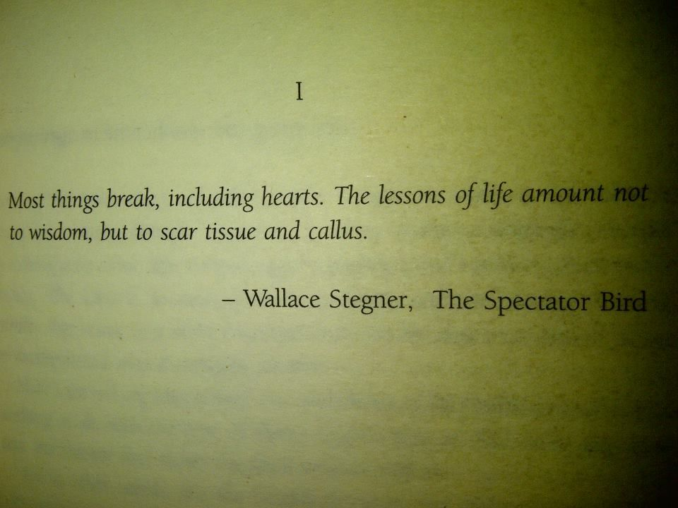 Wallace Stegner Most Things Break Including Hearts The Lessons Of