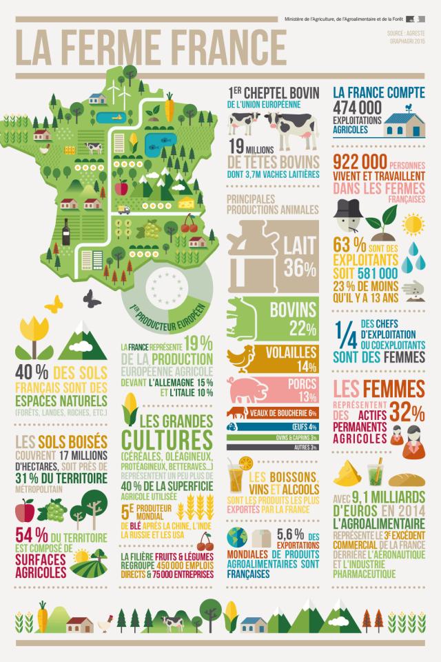 L Agriculture L Agroalimentaire Et La Foret En Infographies Educational Infographic Information Visualization Infographic