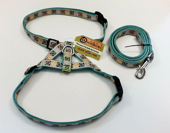 Custom Color Premium Potbelly Pig Harness Leash By