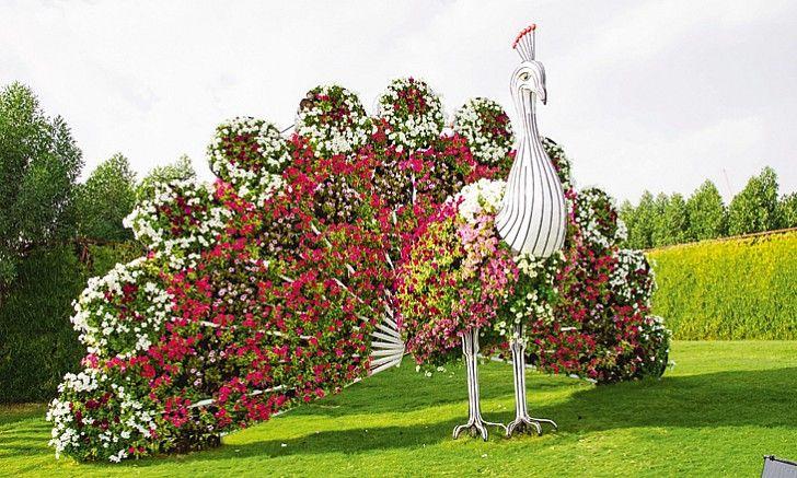 image result for dubai miracle garden - Miracle Garden Dubai