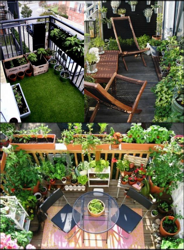 Homemade Lemonade | Ziołowy ogród na dużym balkonie - Homemade Lemonade
