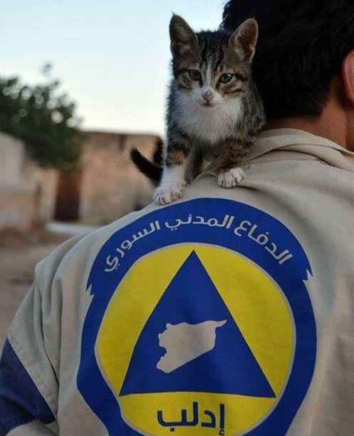 الدفاع المدني السوري ادلب سوريا The White Helmets