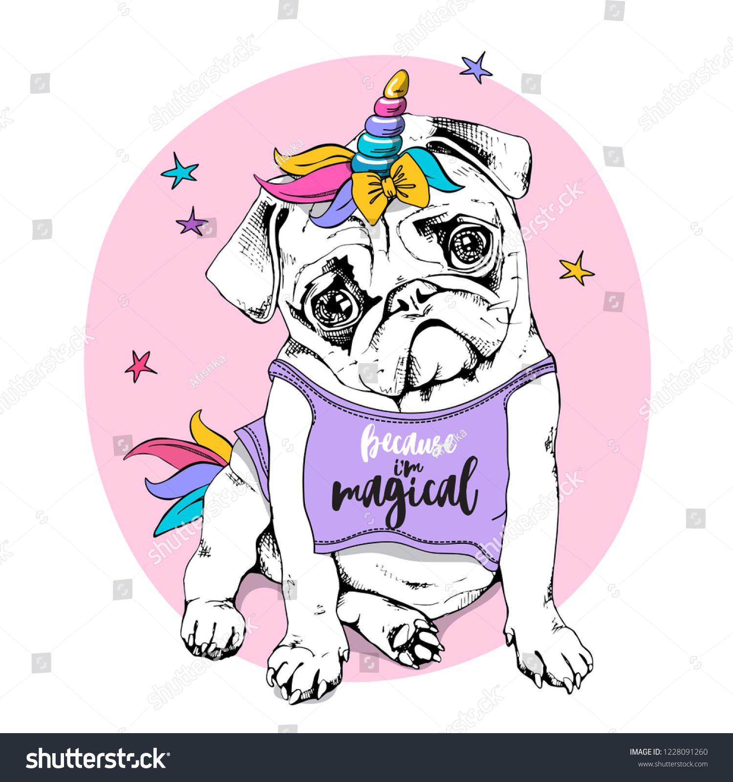 Adorable Puppy Pug in a bright colored costume of a