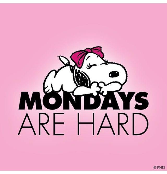 Wallpaper Celular, Lunes, Feliz Lunes, El Grupo De Los Peanuts, Comics De  Snoopy, Frases De Entre Semana, Frases Cacahuetes, Bella, Frases Sobre La  Vida