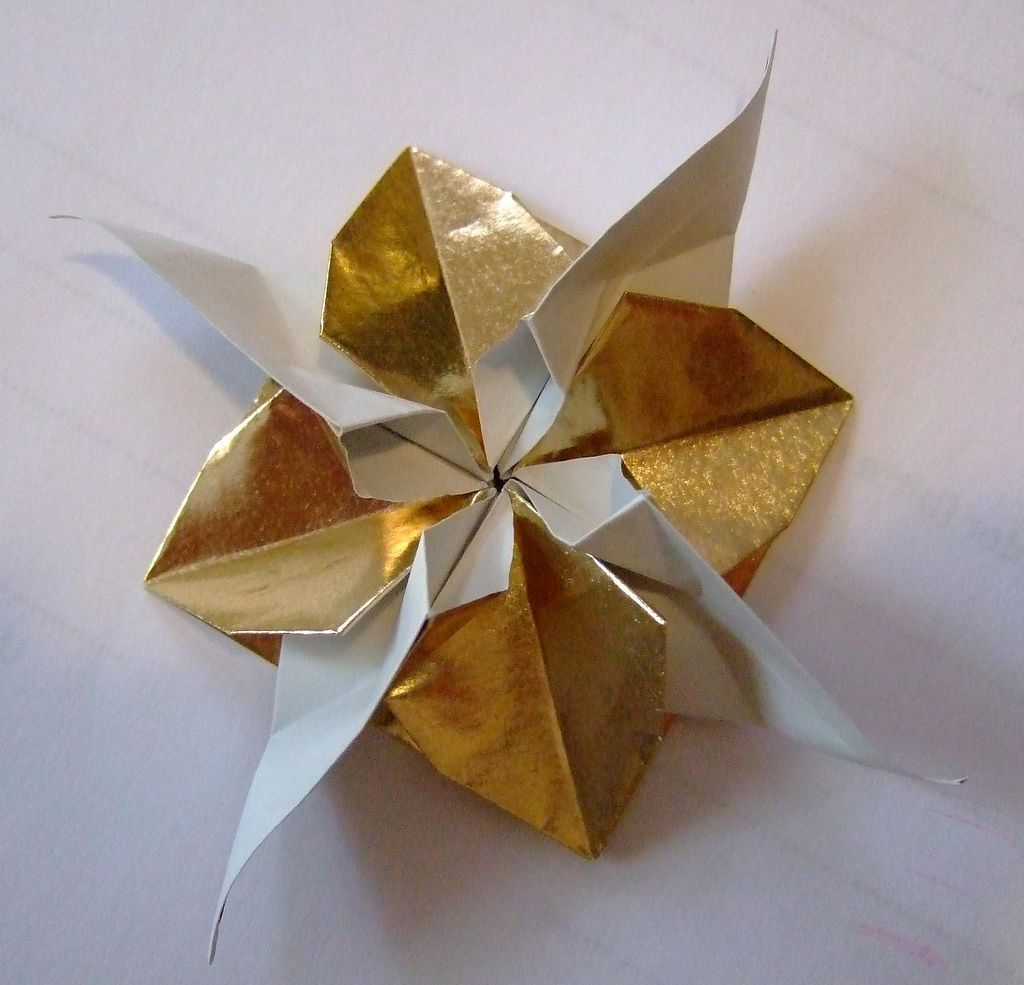 Origami Flower With Leaves Blume Paper Crafts Pinterest Flowers Diagrams Https Flickr P 8smjby One Square Creator Evi Binzinger No