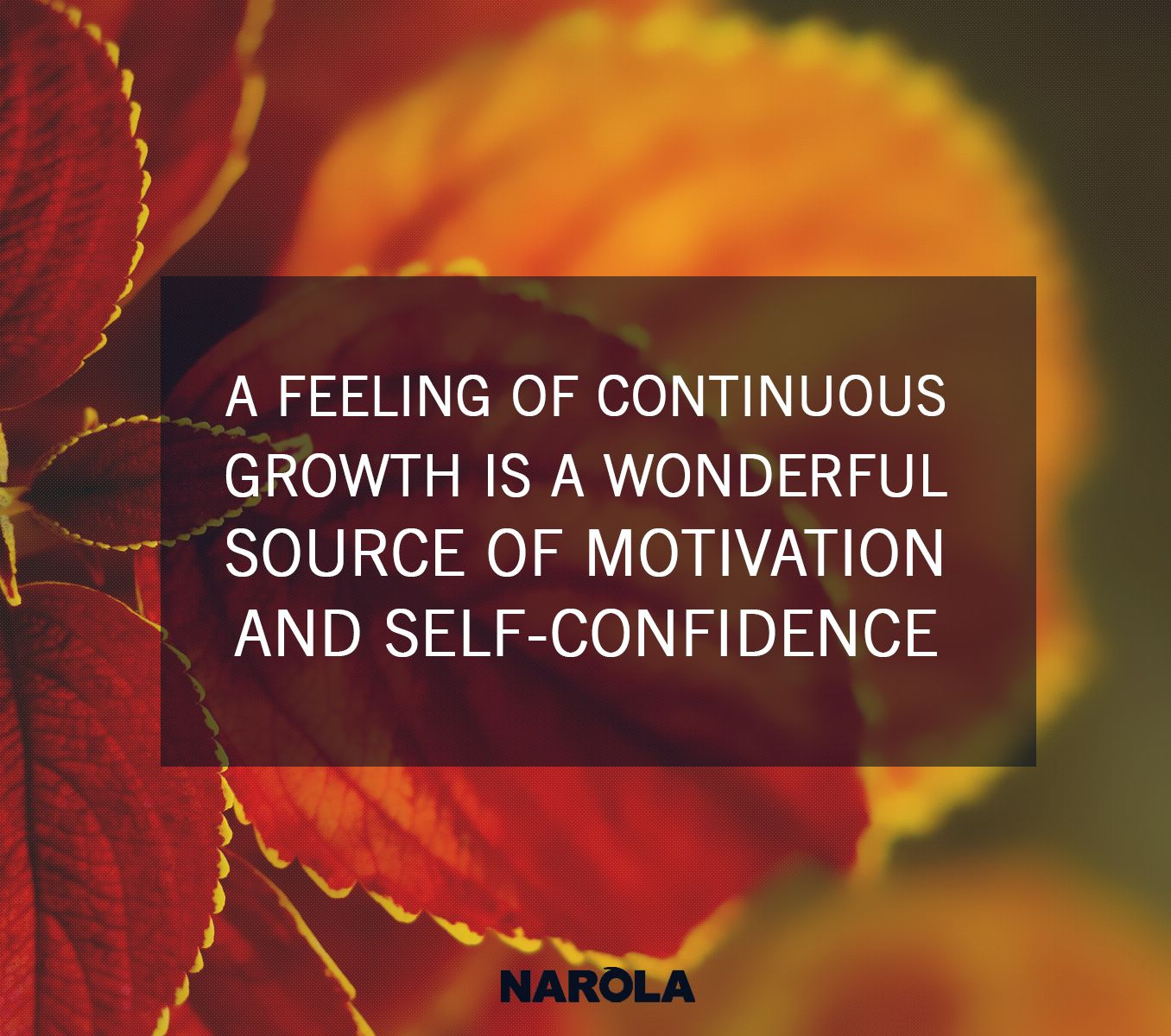 #motivation #selfconfidence #growth #motivationalquotes #braintracy #braintracyquotes #narola #quotes