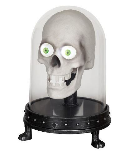 Animated Skull That Talks Back