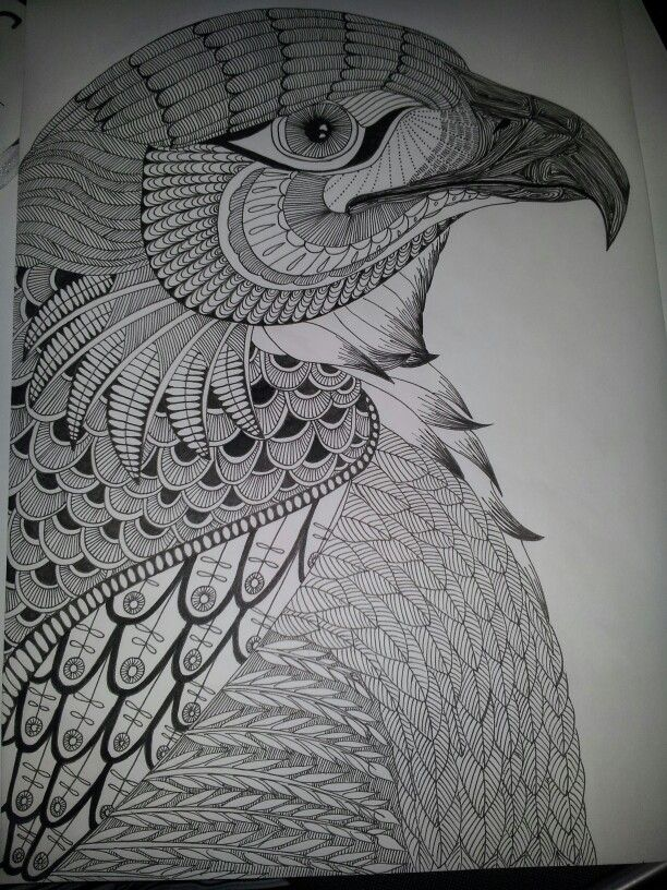 Eagle zentangle. Template from B. Kwok.
