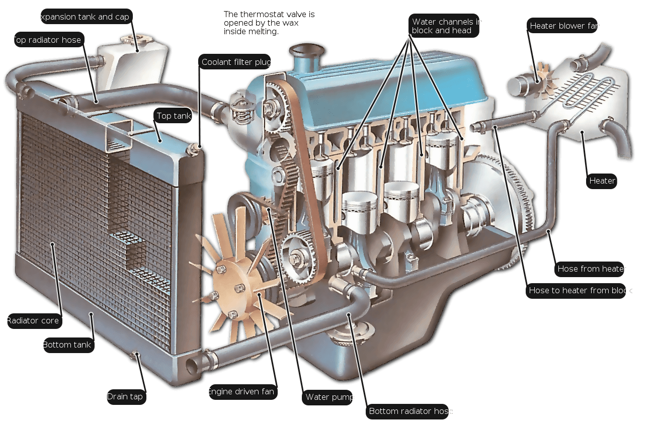How An Engine Cooling System Works Car Radiator Automobile