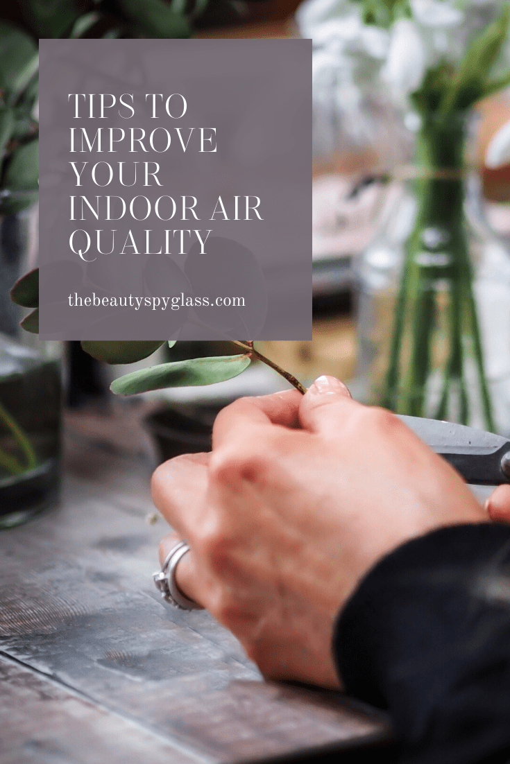 Simple tips to improve the Air Quality In Your Home in