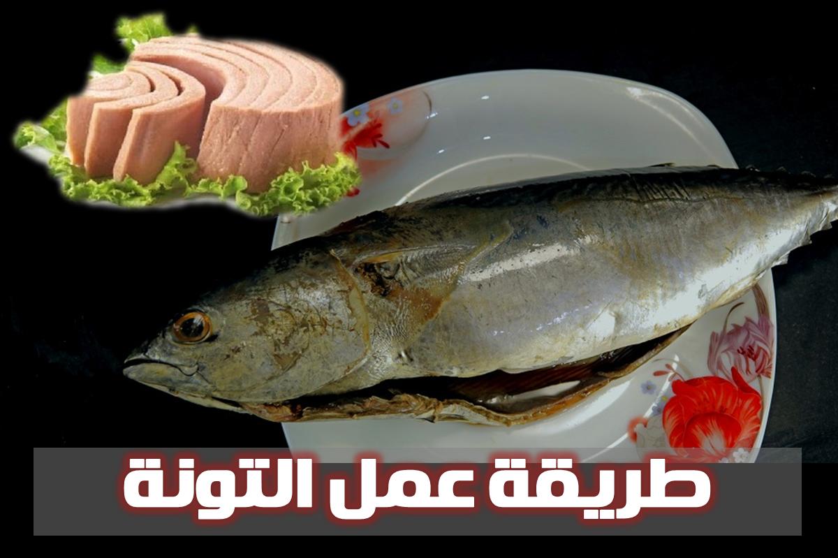طريقة عمل التونة Food Court Food Meat