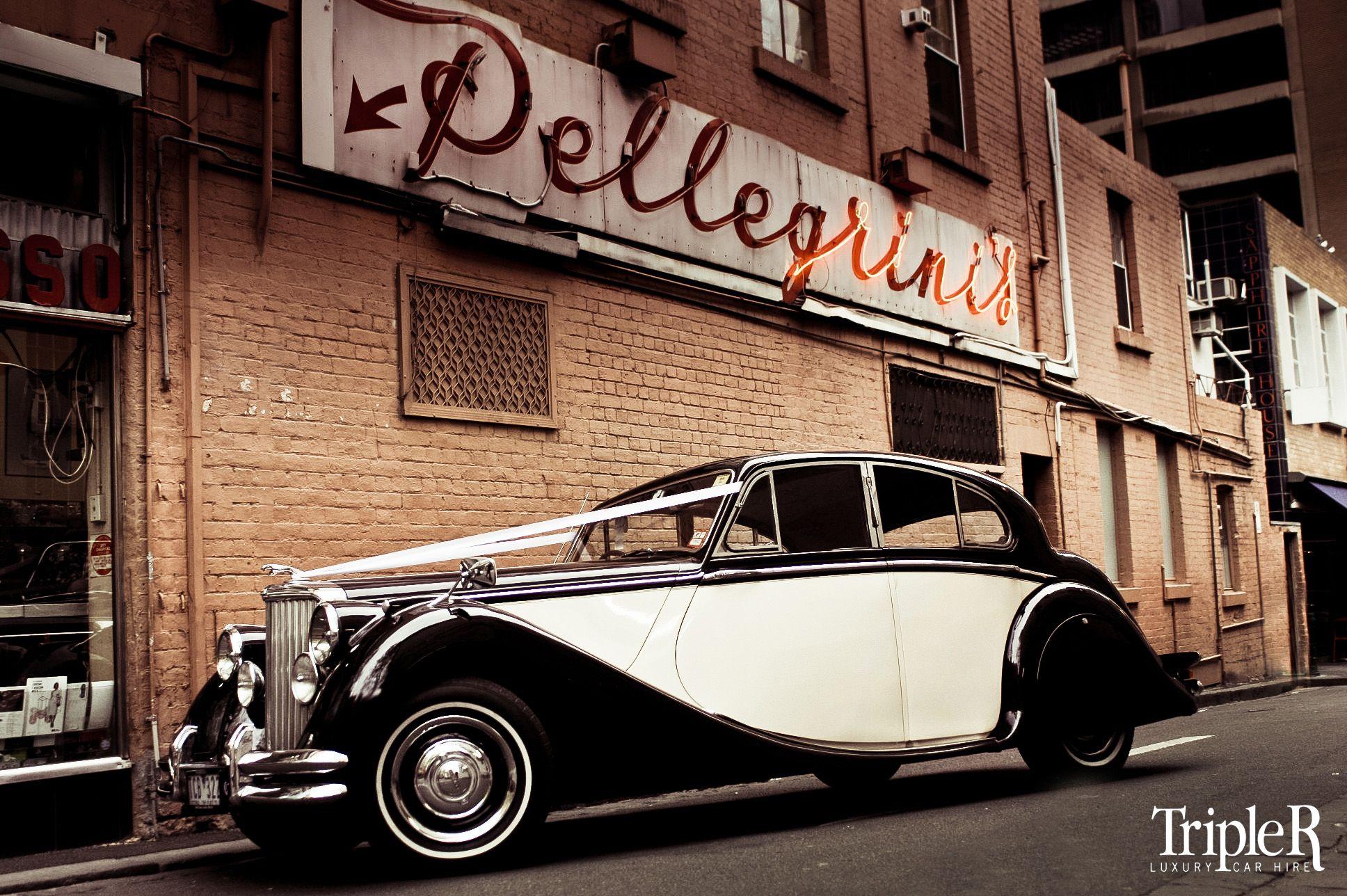 Www.tripler.com.au The Seductive Lines Of The Two Tone Jaguar Mk5. Home  WeddingWedding CarsMelbourne ...