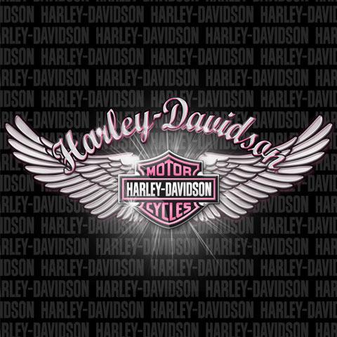 pink harley davidson | Harley-Davidson Pink Wings Theme for BlackBerry : Appitalism