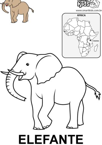 Elefante | animais africanos | Pinterest | Elefantes, Estrés y Pinturas