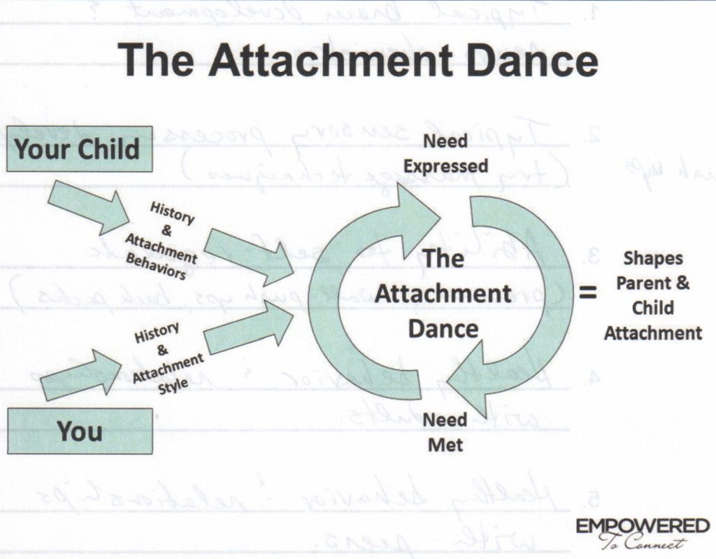 Know Your Own Attachment History It Directly Informs