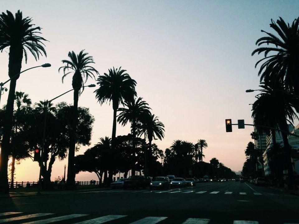 Santa Monica by Miann Scanlan