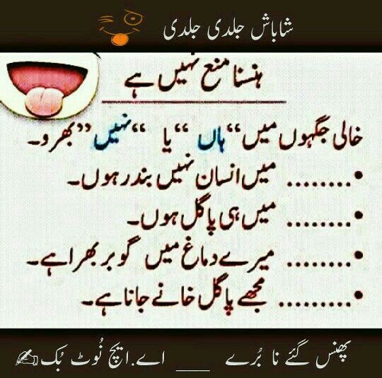 Pin By Sihakhan On Jokes Cute Funny Quotes Love Quotes Funny Fun Quotes Funny