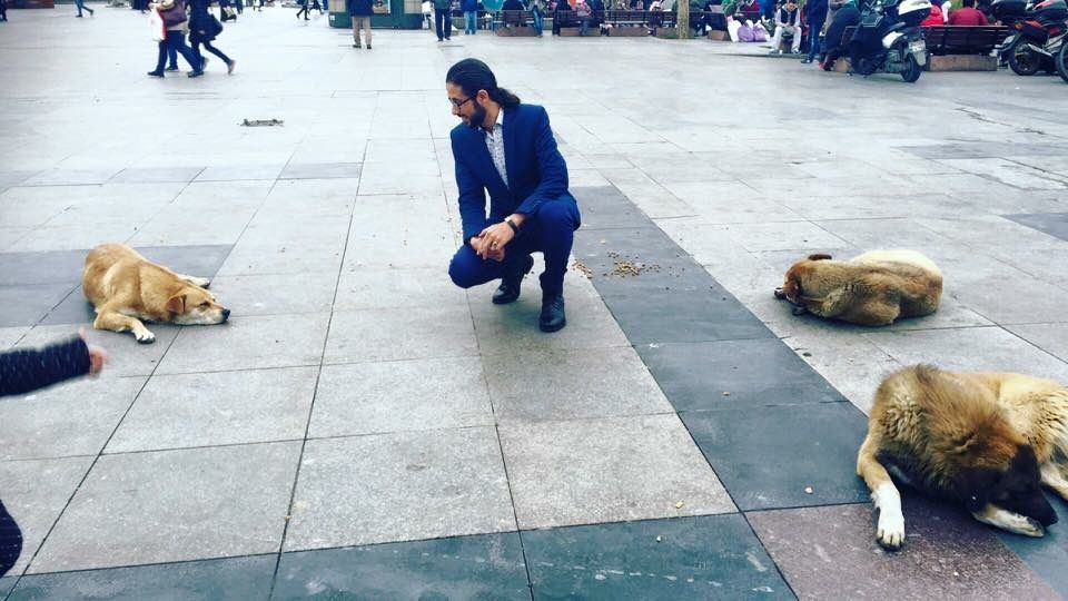 الاعلامي محمد العشي يروض الكلاب في شوارع اسطنبول تركيا Dogs Animals