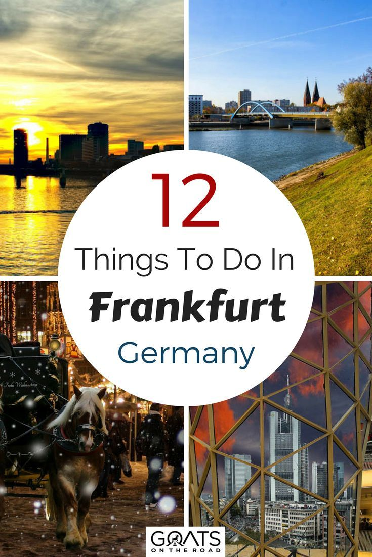 Things To Do In Frankfurt A Locals Guide Backpacking Europe - 12 things you cant miss in rome