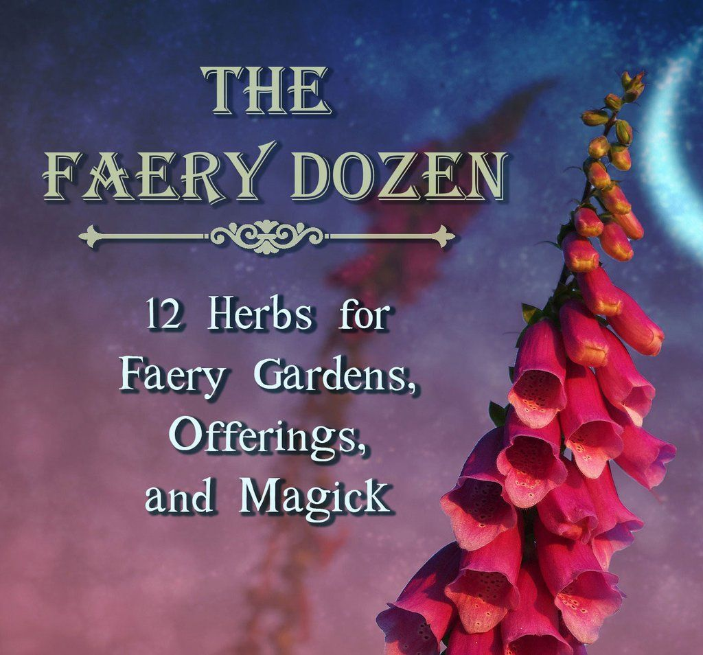 The Faery dozen: 12 herbs for Faery gardens, offerings, and magick