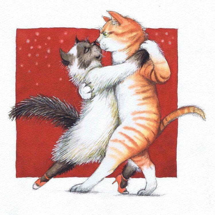Танцующие картинки кошек