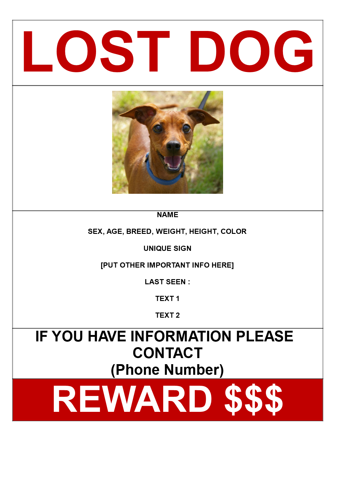 Missing Dog Poster With Reward A3 Size
