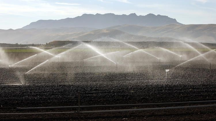 California water use declines 13.5%, state board reports
