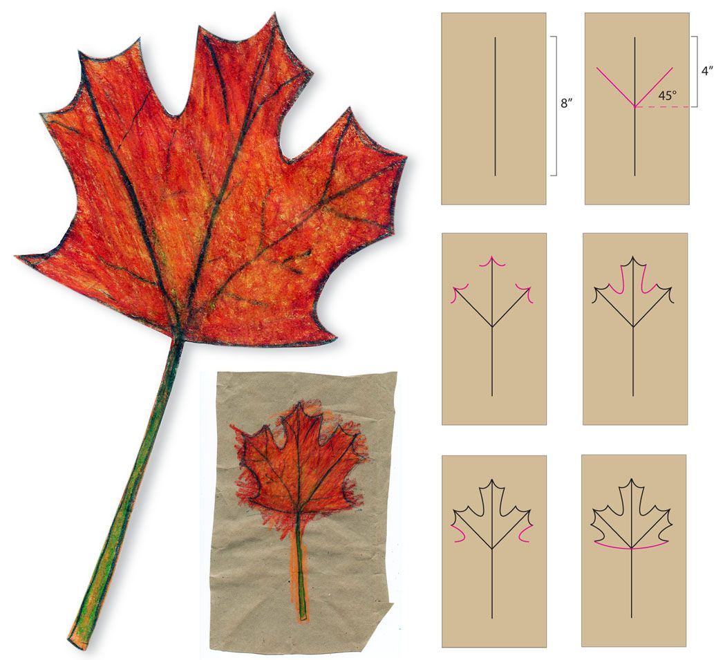 Art Projects For Kids: How To Draw A Maple Leaf I Might Try This