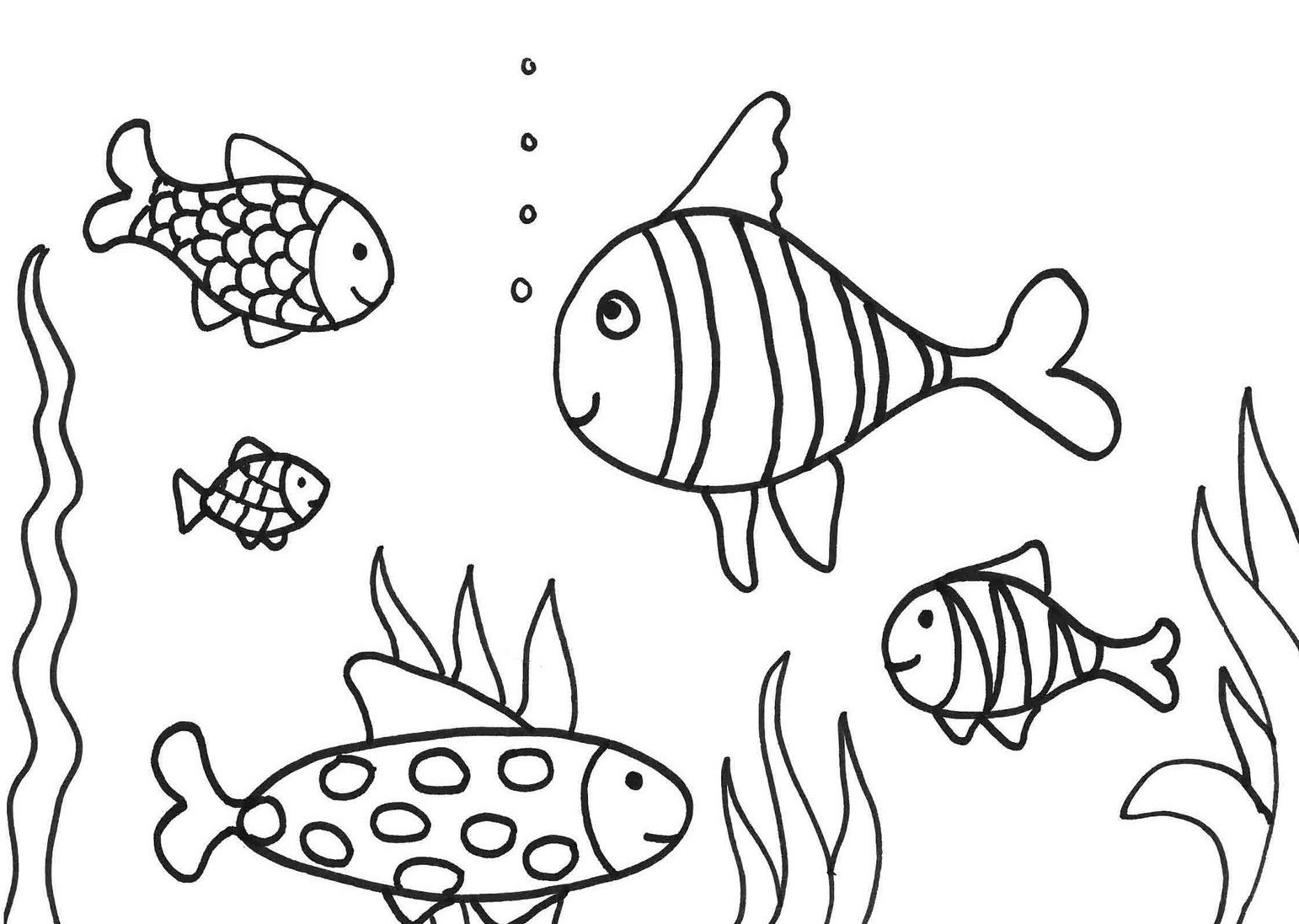 Five Fish Swimming In Water