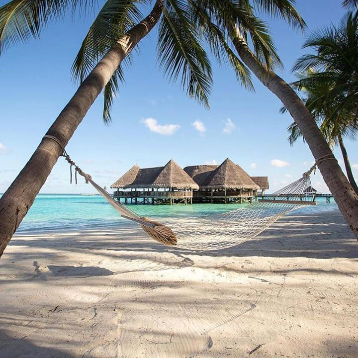 Gili Lankanfushi Maldives is the #1 luxury hotel in Asia in this year's #TravelersChoice awards for hotels! Fun fact: When you get to the airport in Male and take the complimentary speedboat ride to the hotel they take away your shoes and only give them