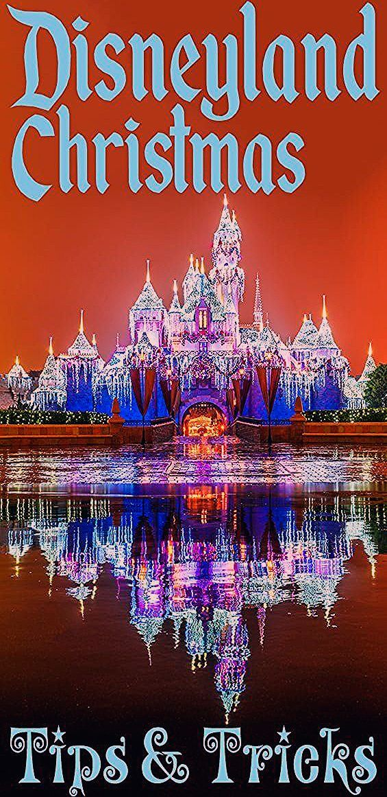 Photo of Disneyland Christmas Ultimate Guide – Disney Tourist Blog