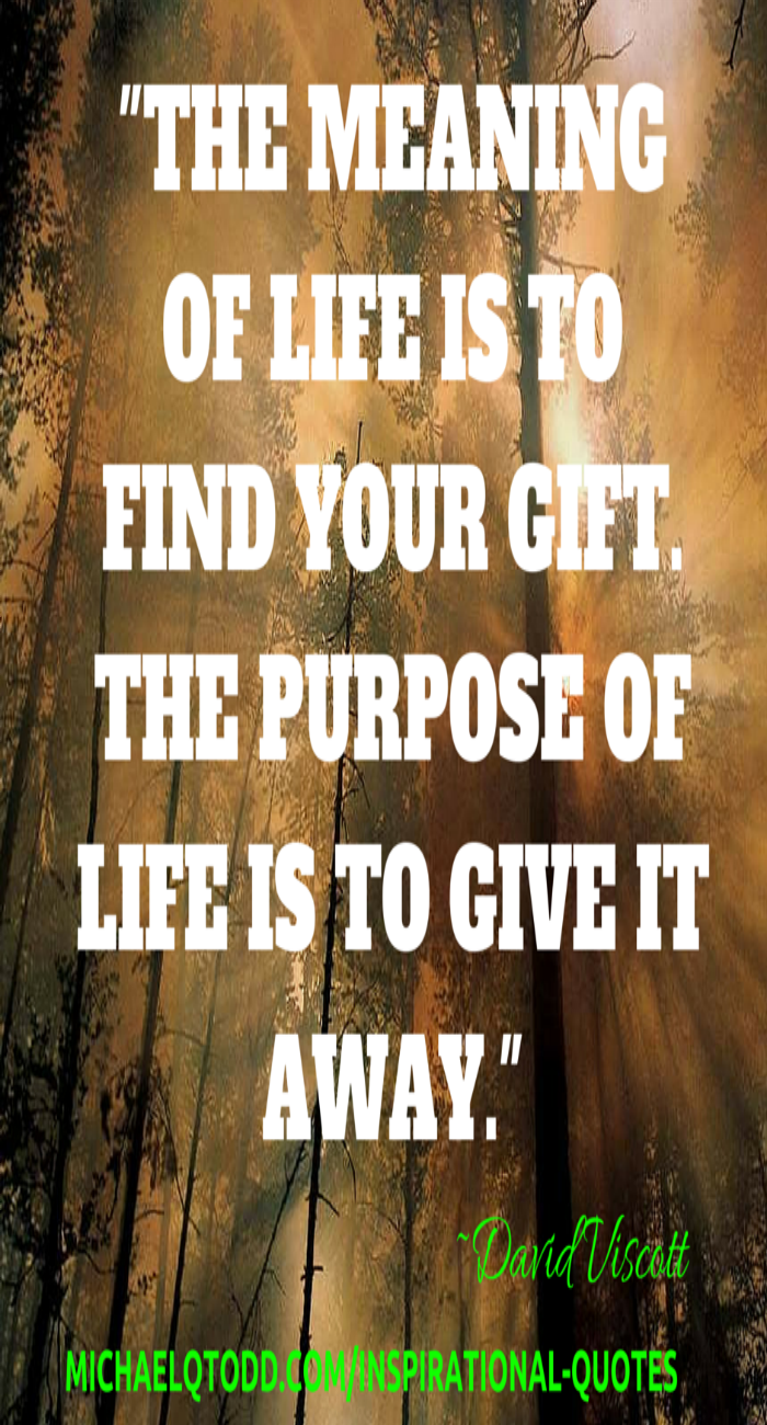 Meaning And Purpose Of Life Motivational Quote Inspirational