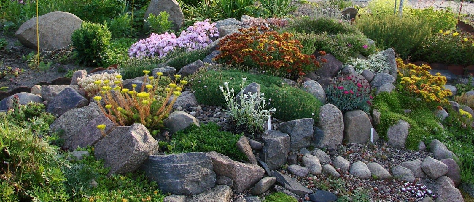 Forum Ogrodnicze Oaza Topic Skalniak I Kamienie U Piotrka 2 4 Home Vegetable Garden Garden Stones Garden Gifts