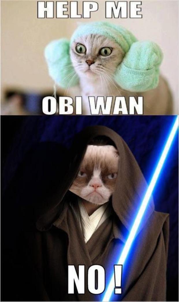 Grumpy Cat Star Wars Help Me Obi Wan No Dump A Day Funny Grumpy Cat Memes Grumpy Cat Humor Grumpy Cat Meme