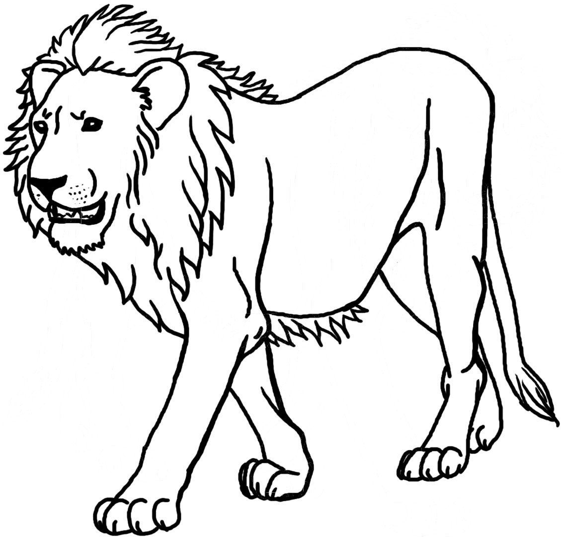 Lion Coloring Pages Preschool And Kindergarten Lion Coloring