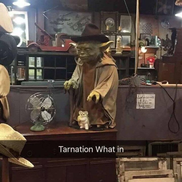 What In Tarnation With Yoda From Star Wars Memes Dopl3r Com Star Wars Humor Star Wars Memes Star Wars Characters